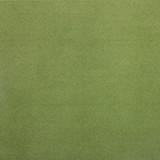 Colibri Mint