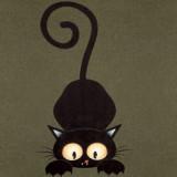 Cat Gray